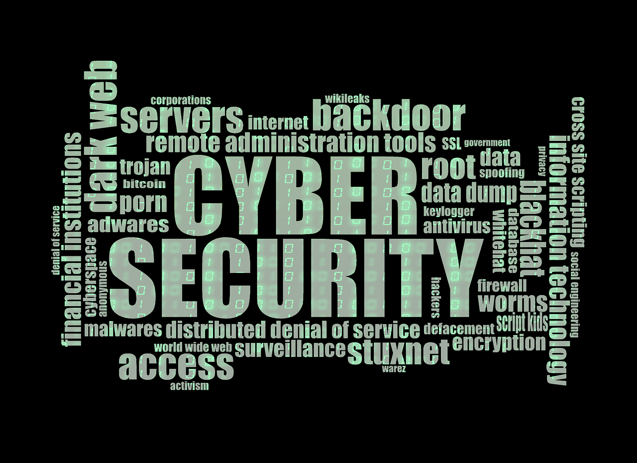 cyberSecutity